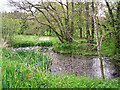 NY6815 : Pond in a field beside Hoff Beck by Rose and Trev Clough