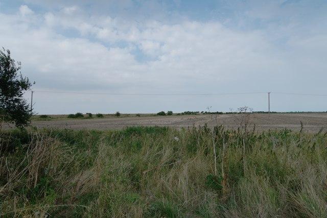 Working farmland