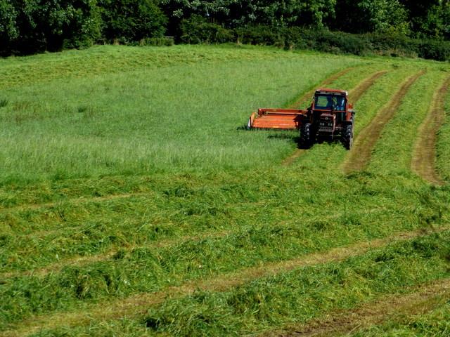 Cutting grass, Blackfort