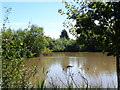 SO8971 : Purshull Green Pool (2) by Jeff Gogarty