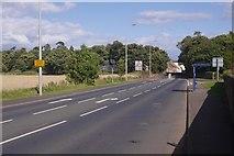 NT6578 : Edinburgh Road, West Barns by Richard Webb