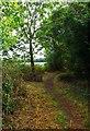 SO8253 : Public footpath at Upper Wick, Rushwick, Worcs by P L Chadwick