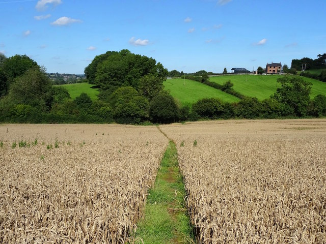 Field path on the line of Deepdale Lane