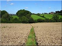 SK1342 : Field path on the line of Deepdale Lane by Ian Calderwood