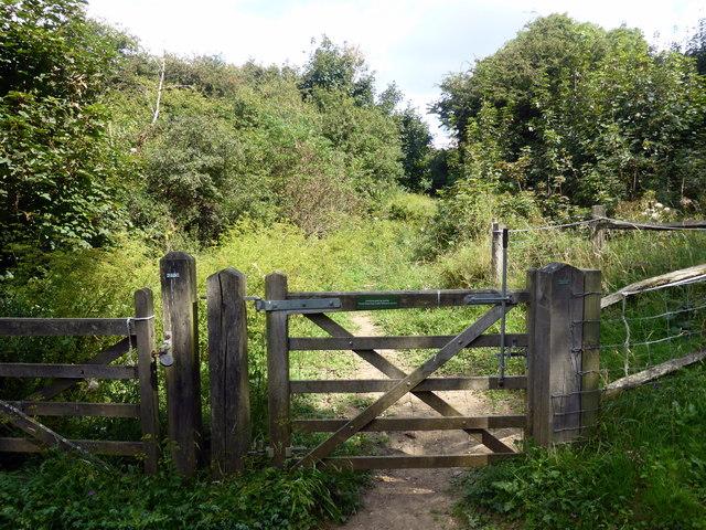 Gate into Lullington Heath National Nature Reserve