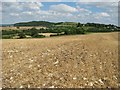 ST6562 : Stubble and stones by Peter Goodwin