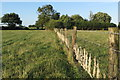 SP6627 : Wooly fence on the path to Cowley Lodge by Philip Jeffrey