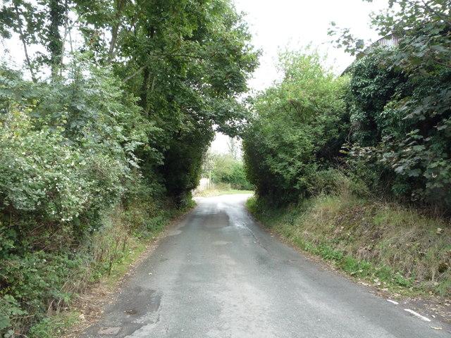 Dodsleigh Lane, Dods Leigh