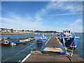 SX9781 : The Exmouth Ferry at Starcross by Des Blenkinsopp