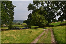 SK2276 : Path from Eyam to Stoney Middleton by David Martin