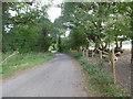 SU6407 : Road past Bushy Coppice by Marathon