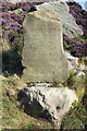 SJ8557 : Mow Cop Castle Commemorative Stone by Jeff Buck