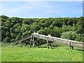 SO5414 : Footbridge  over  River  Wye  Biblins  Camp by Martin Dawes