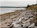 NH7169 : Invergordon Shoreline near Cromarty View (low tide) by David Dixon