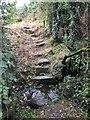 SM8026 : Stone Steps by Alan Hughes