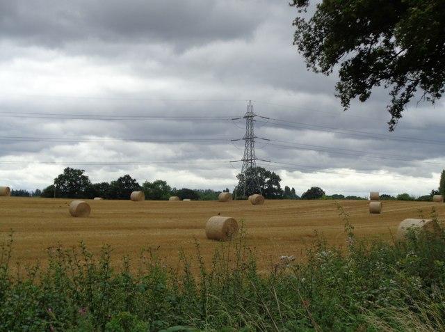 Straw bales in field off Clattercut Lane