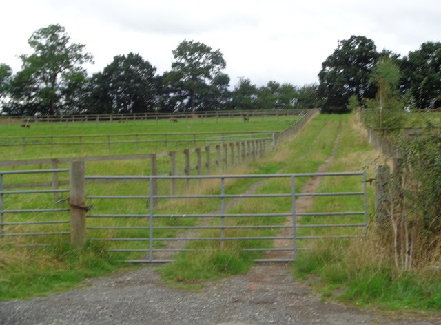 Gated track near Rushock, Worcestershire