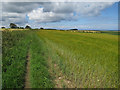 TG0643 : Footpath from Salthouse by Hugh Venables
