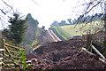 SX9371 : New residential development off Picket Head Hill, Shaldon by Robin Stott
