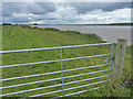 SE9521 : Gate on the river bank by Mat Fascione