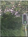 SK5446 : UK Green Traffic Light Arrow Signal by Gary