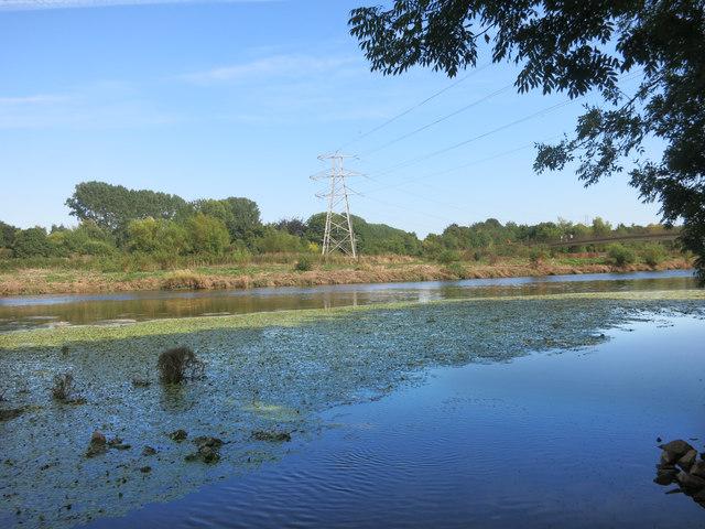 River Exe Backwater