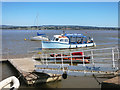 SX9685 : The Topsham - Turf Ferry Arriving by Des Blenkinsopp