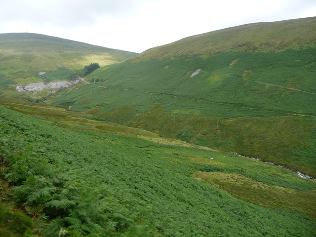 Moorland sheep pasture, south side of Laxey Glen