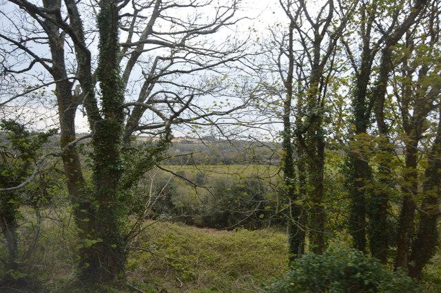 View from the Cornish Main Line near Newbridge