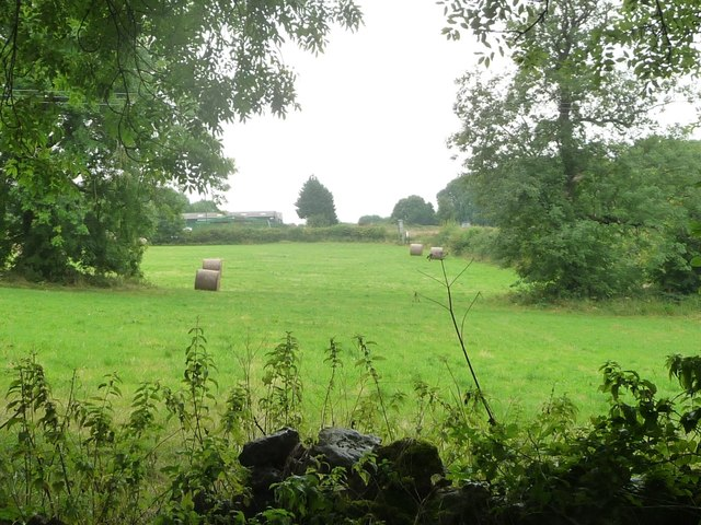 Bales in a field, east of Rise End