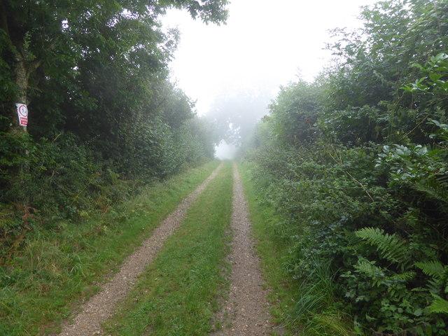 Byway on Seldon Hill