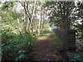 SE0725 : Path on an old viaduct, Halifax by Malc McDonald