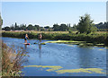 SX9389 : Paddle Boarding on the Exeter Canal by Des Blenkinsopp