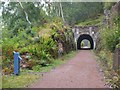 NH3302 : Tunnel on the former railway by Loch Oich by Jim Barton