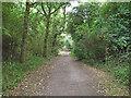 TM0440 : Hadleigh Railway Walk by Roger Jones