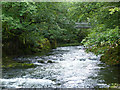 NY3403 : Trevor Woodburn bridge from the top of Skelwith Force by Norman Caesar