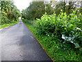 H4271 : Tamlaght Road by Kenneth  Allen