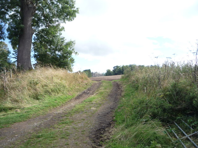Farm track off the A698