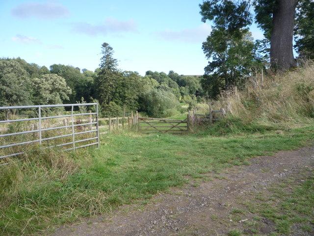 Field entrance near the River Till
