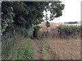 TR3248 : Path to Maydensole by Hugh Craddock