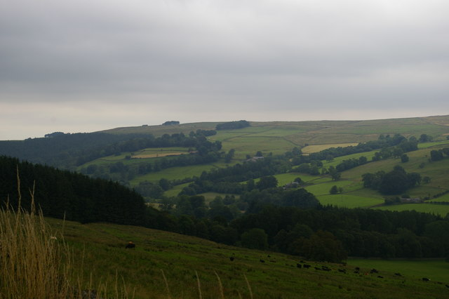 Looking down West Allendale from the A686