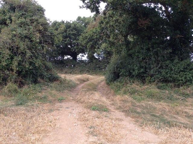Dogleg in path to Maydensole