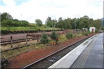 NN3825 : Crianlarich station sidings by Richard Hoare