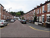 SJ8889 : West along Herbert Street, Edgeley, Stockport by Jaggery