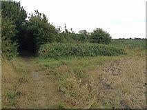 TR3256 : Beside the Sandwich bypass by Hugh Craddock