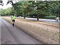 TQ2780 : Runner beside horse, cycle and vehicle routes, Hyde Park by David Hawgood