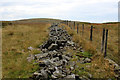 SD7987 : Boundary Fence leading towards Widdale Great Tarn by Chris Heaton