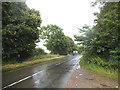 SU7347 : Hayley Lane, Long Sutton by David Howard
