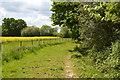 TQ3538 : Bridleway, Greenfield Shaw by N Chadwick