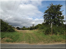 TL9467 : Footpath to Sandy Lane by Adrian Cable